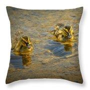 Baby Ducks Throw Pillow
