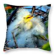 Baby Egrets Throw Pillow