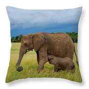 Baby Elaphant Throw Pillow