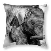 Baby Elephant Throw Pillow