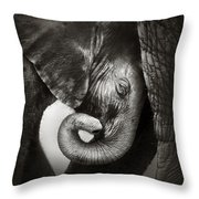 Baby Elephant Seeking Comfort Throw Pillow