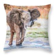 Baby Elephant Spraying Water Throw Pillow