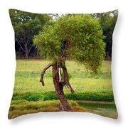 Baby Ent Throw Pillow