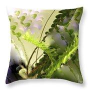 Baby Ferns Unfurling For Jim Throw Pillow