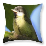 Baby Coal Tit Throw Pillow