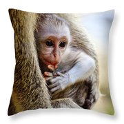 Baby Green Monkey - Barbados Throw Pillow