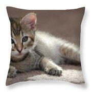 Baby Gretchen Throw Pillow