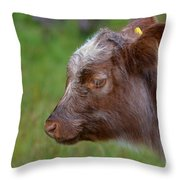 Baby Highland Cow Throw Pillow