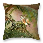 Baby Hummingbird In The Forest Throw Pillow
