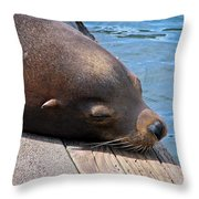 Baby I'm A Chillin' Throw Pillow