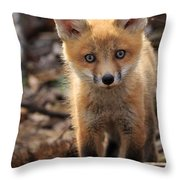 Baby In The Wild Throw Pillow