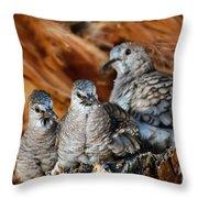 Baby Inca Doves Throw Pillow