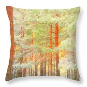 Baby Its Cold Outside But The Trees Don't Freeze  Throw Pillow