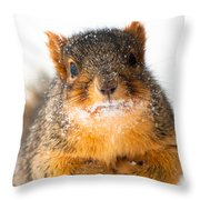 Baby It's Cold Outside Throw Pillow by Optical Playground By MP Ray
