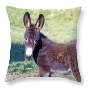 Baby Jenny Throw Pillow