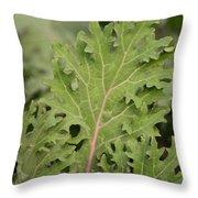 Baby Kale Throw Pillow