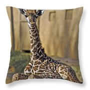Baby Kiko Throw Pillow