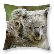 Baby Koala With Mom Throw Pillow