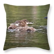 Baby Loons And Mom Throw Pillow
