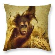 Baby Orangutan At The Denver Zoo Throw Pillow