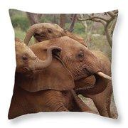 Baby Orphans Explore Imenti Tsavo Kenya Throw Pillow