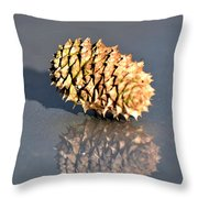 Baby Pine Cone Throw Pillow