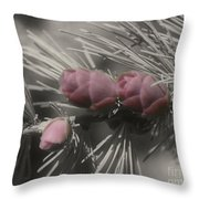 Baby Pine Cones In Partial Color Throw Pillow