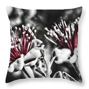 Baby Pohutakawa Throw Pillow