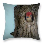 Baby Red Bellied Woodpecker Throw Pillow