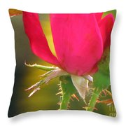 Baby Roses Throw Pillow
