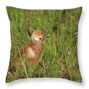 Baby Sandhill Crane Chick Throw Pillow