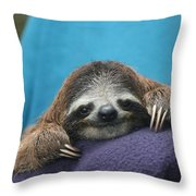 Baby Sloth Throw Pillow