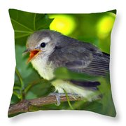 Baby Sparrow In The Maple Tree Throw Pillow