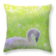 Baby Swans Enjoy A Summer Day Throw Pillow