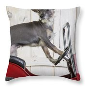 Baby You Can Drive My Car Throw Pillow