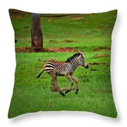 Baby Zebra Running Throw Pillow
