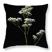 Baby's Breath-1 Throw Pillow
