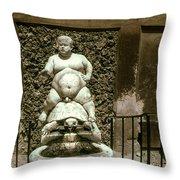 Bacchus Fountain Throw Pillow