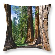 Bachelor And Three Graces In Mariposa Grove In Yosemite National Park-california Throw Pillow