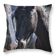 Bachelor Stallions - Pryor Mustangs Throw Pillow