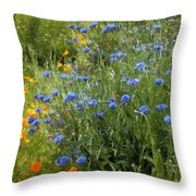Bachelor's Meadow Throw Pillow