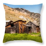Bachelors Row Throw Pillow by Sue Smith