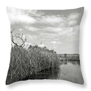 Back Bay In Bw Throw Pillow