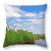 Back Bay In Color Throw Pillow