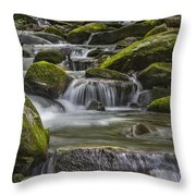 Back Country Stream Throw Pillow by Jon Glaser