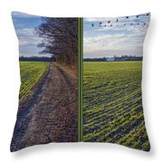 Back Forty - Gently Cross Your Eyes And Focus On The Middle Image Throw Pillow