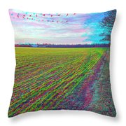 Back Forty - Use Red/cyan Filtered 3d Glasses Throw Pillow
