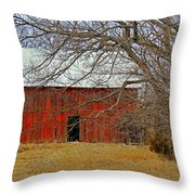 Back In The Woods Throw Pillow