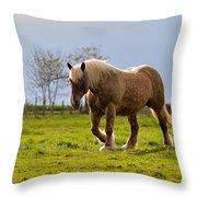 Back Light Horse Throw Pillow