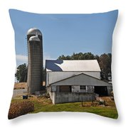 Back Of The Barn Throw Pillow